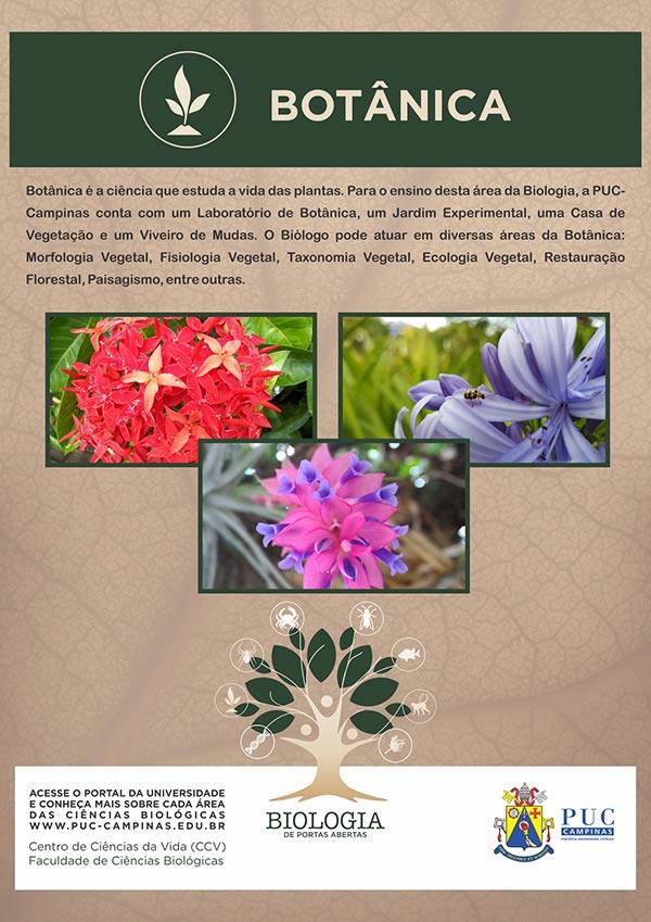 Cartazes-Biologia-F_Botanica