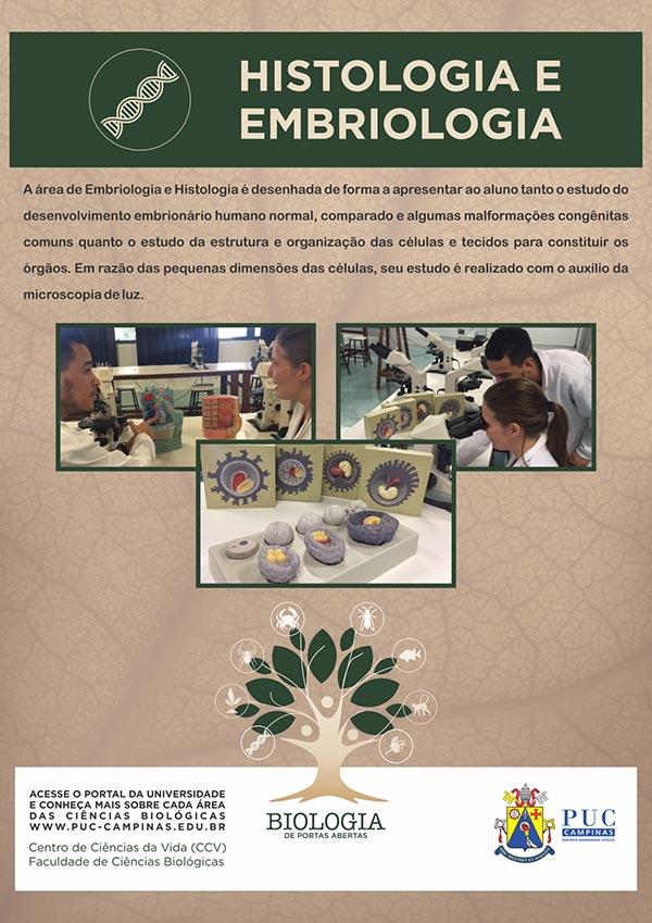 Cartazes-Biologia-F_Embriologia